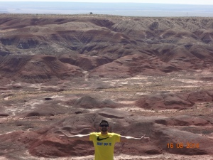 Petrified Forest National Park 034