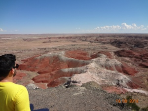 Petrified Forest National Park 080
