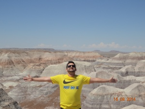 Petrified Forest National Park 178