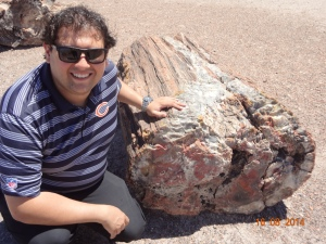 Petrified Forest National Park 202
